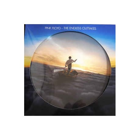 Pink Floyd ‎– The Endless Outtakes - LP Vinyl Album Picture Disc