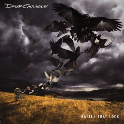 David Gilmour ‎– Rattle That Lock - Double LP Vinyl Album