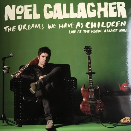Vinyl Noel Gallagher Oasis The Dreams We Have As