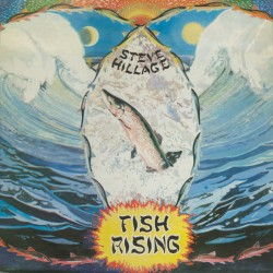 Steve Hillage ‎– Fish Rising - LP Vinyl Album