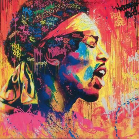 Jimi Hendrix – Purple Haze - Live At The Isle Of Wight - LP Vinyl Album Picture Disc