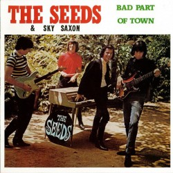 The Seeds & Sky Saxon ‎– Bad Part Of Town - LP Vinyl Album