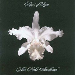 Kings Of Leon – Aha Shake Heartbreak - Double LP Vinyl Album Edition 180 Gr
