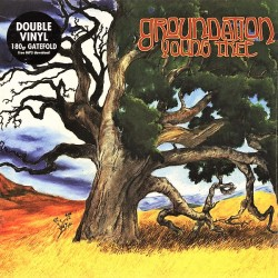 Groundation ‎– Young Tree - Double LP Vinyl Album + MP3 Code