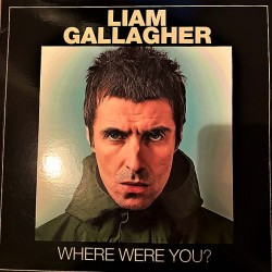 Liam Gallagher ‎– Where Were You? - LP Vinyl Album Coloured