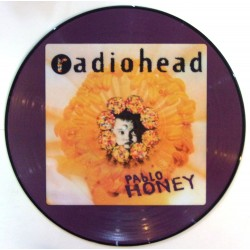 Radiohead ‎– Pablo Honey - LP Vinyl Album Picture Disc